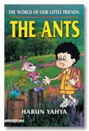 The World of our Little Friends : The Ants
