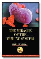 The Miracle in the Immune System (inside colour pages)