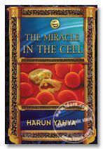The Miracle in the Cell (inside colour pages) Harun Yahya