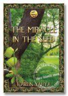 The Miracle in the Seed (inside colour pages)