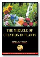 The Miracle of Creation in Plants (inside colour pages)